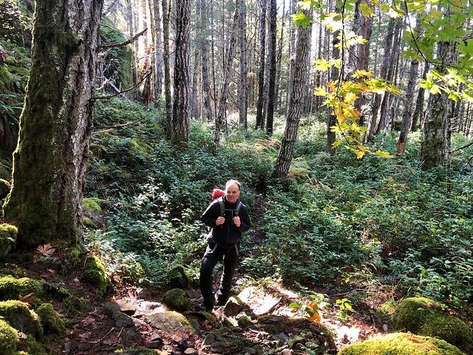 Harrison Trail