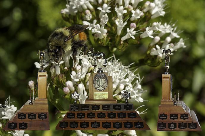 Nature Trophy Final
